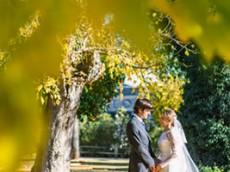 Celebración de una boda en una bodega.