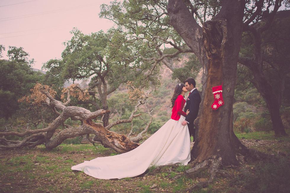 boda-navidad-Marbella-5