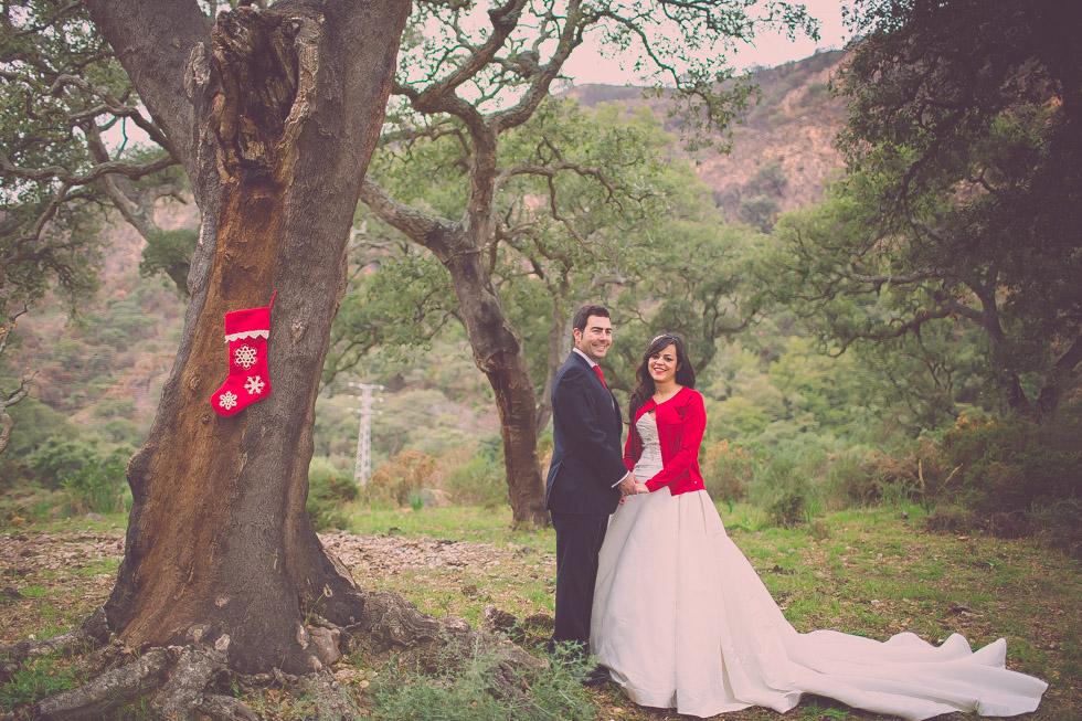 boda-navidad-Marbella-7