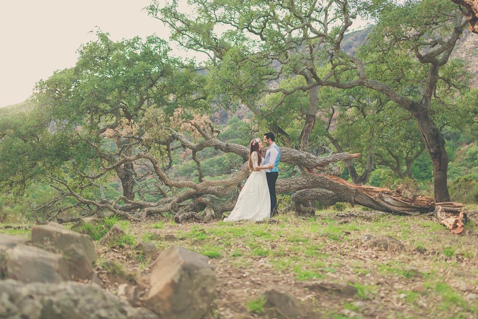 fotografo-bodas-marbella-19