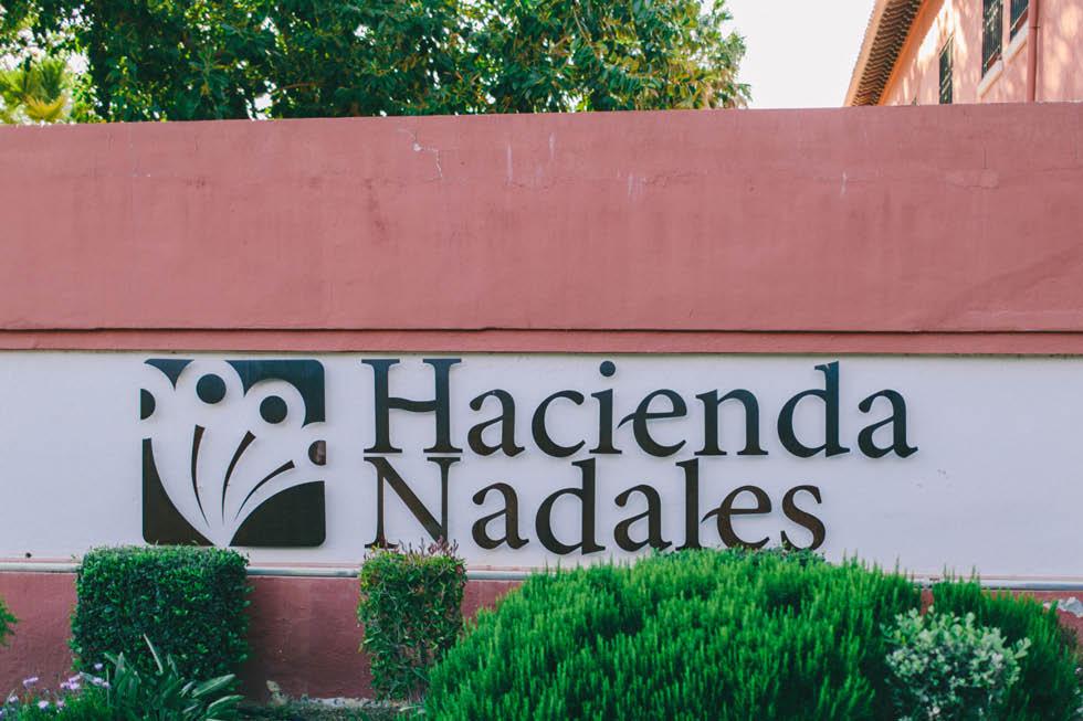 boda Hacienda Nadales Malaga 2