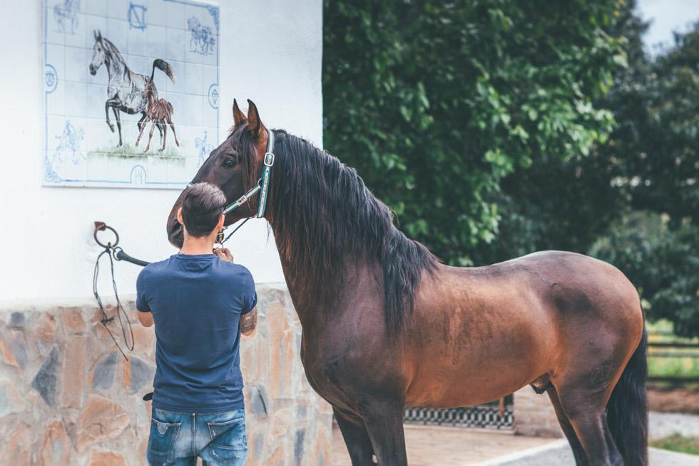 fotografo boda Marbella-29